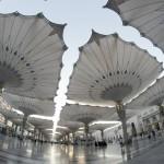 12-ФГ-0023 зонты в городе Медина Саудовская Аравия