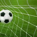 12-ФЛ-0008 мяч в воротах