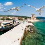 12-ФПр-0053 чайки порт греция