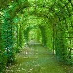 12-ФПр-0065 зеленая арка
